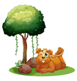 A smiling brown bear lying near the tree vector image vector image