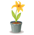 Lily Pot Plant vector image