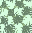 Seamless camouflage pattern of palm leaf green vector image