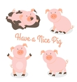 Cute happy cartoon pigs set vector image