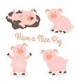 Cute happy cartoon pigs set vector image