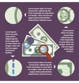 Money inspect infographic vector image