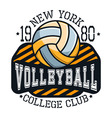 Volleyball College Club New YorkT-shirt Typography vector image