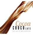 Chocolate splash vector image