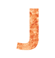 j land letter vector image vector image
