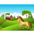 Cartoon horse in the farm vector image