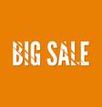tag big sale vector image