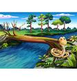 A snake at the riverbank vector image