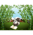 A panda reading at the hilltop with bamboos vector image