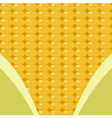 corn surface with leaf vector image
