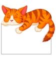Cute cat cartoon sleeping vector image vector image