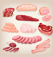 collection of various delicious meat products vector image