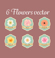 six pastel anemone rose hibiscus and water lilly vector image