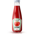 Ketchup Realistic Bottle vector image