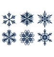Set of 6 snowflakes vector image vector image