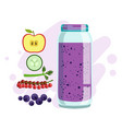 apple cucumber red currant and blueberry vector image
