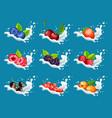 cartoon natural sweet products set vector image