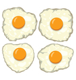 fried eggs vector image