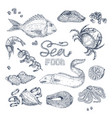 seafood monochrome sketches set vector image