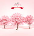 Spring background with blossoming sakura trees vector image vector image