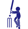 Sport icon design for cricket vector image