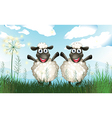 Two sheeps at the field vector image