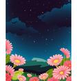 Evening Floral Fleid vector image vector image