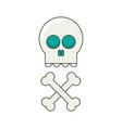 skull flat vector image