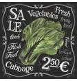 ripe cabbage logo design template fresh vector image