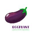 fresh eggplant isolated on white background vector image