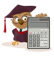 Owl teacher and calculator vector image