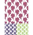 Grape Pattern vector image