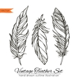 Vintage feather set isolated on white vector image