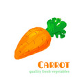fresh carrot isolated on white background vector image