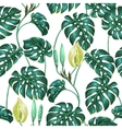Seamless pattern with monstera leaves Decorative vector image