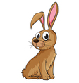 A smiling rabbit vector image