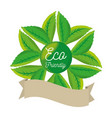 ecology label with green leaves vector image