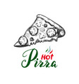 slice of pizza 1 vector image