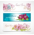 Tropical flower banners vector image