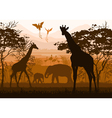 nature with wild animals giraffe elephant flamingo vector image