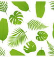 tropicla seamless pattern with palm and fern vector image