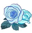 blu rose vector image