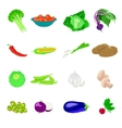 Vegetables photo realistic set vector image