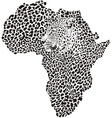 Leopard skin and head in silhouette Africa vector image vector image