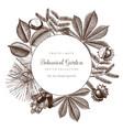 vintage frame with botanical elements vector image