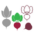 Beet Outline Silhouette Icon vector image