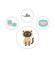 Siamese cat round circle icon set in shape of paw vector image
