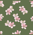 cherry blossom pattern vector image