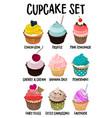 cupcakes set set muffins different vector image