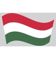 Flag of Hungary waving vector image